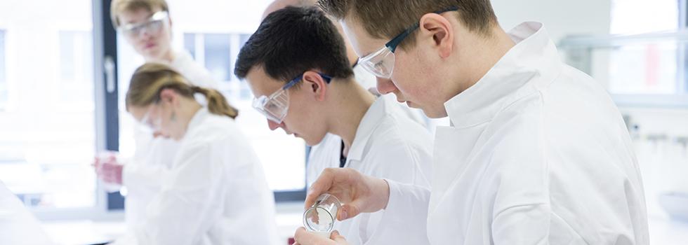 Fakultät für Verfahrens und Systemtechnik